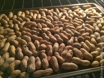 Roasting raw peanuts!