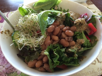 Monster Salad with Beans