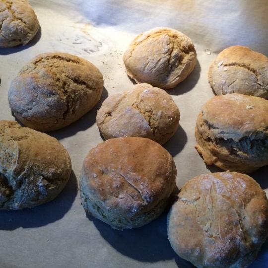 Fresh Biscuits!