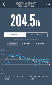 My weight stats! Wrong way! Oops - let's blame the Mexican restaurant we went to last night!
