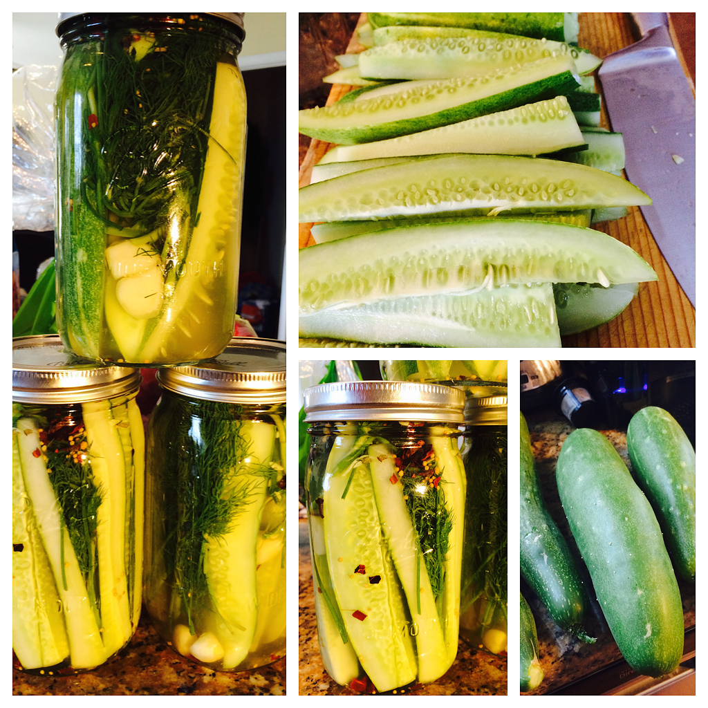 Pickling our cucumbers!